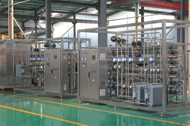 RO Purification System 10000LPH EDI Pure Water Treatment Plant